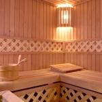 sauna-v-zhilom-dome_111